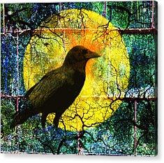 In The Night Acrylic Print by Nancy Merkle