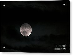 In The Night Sky 5a Acrylic Print by Sharon Talson