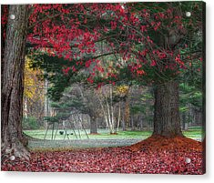 In The Park Acrylic Print by Bill Wakeley