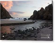 In The Pink Acrylic Print by Suzanne Luft
