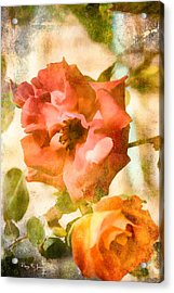 Floral - In The Rose Garden Acrylic Print by Barry Jones