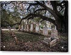 In The Shadow Of The Oak Acrylic Print