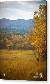 In The Smokies Acrylic Print