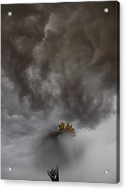 In The Storm Acrylic Print by Tim Good