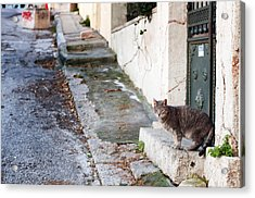 Acrylic Print featuring the photograph In The Streets Of Athens by Laura Melis