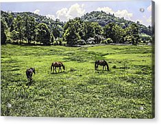 In The Valley Acrylic Print by Barry Jones
