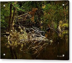 In The Wild Wood Acrylic Print by RC deWinter