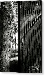 In This Space #1 Acrylic Print