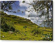 Inca Ruins On Mount Cojitambo In Ecuador Acrylic Print by Al Bourassa