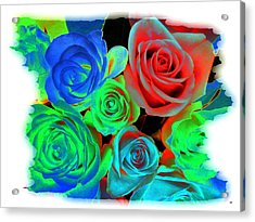 Incandescent Roses Acrylic Print by Will Borden