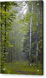 Acrylic Print featuring the photograph Incoming Fog by Susan Crossman Buscho