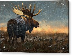 Incoming Storm Acrylic Print by Aaron Blaise