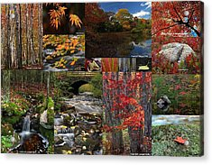 Incredible New England Fall Foliage Photography Acrylic Print by Juergen Roth