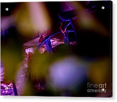 Incripted Acrylic Print by Sharon Costa