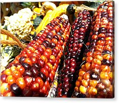 Acrylic Print featuring the photograph Indian Corn by Caryl J Bohn