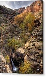 Indian Creek Acrylic Print by Kiril Kirkov