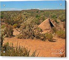 Indian Earth Shelter In The Desert Acrylic Print by John Malone