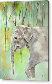 Acrylic Print featuring the painting Indian Elephant by Elizabeth Lock