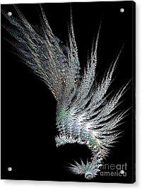 Indian Feather Head Dress Acrylic Print by Gail Matthews
