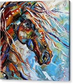Indian Paint Pony Acrylic Print