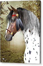 Acrylic Print featuring the digital art The Indian Pony by Jayne Wilson