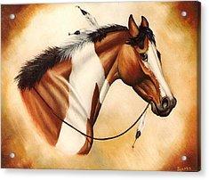 Indian Pony Acrylic Print by Kay Sparks