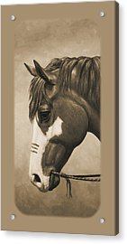 Indian Pony War Horse Sepia Phone Case Acrylic Print