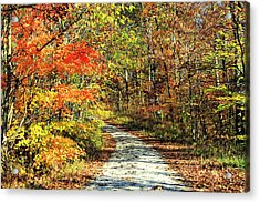 Indiana Back Road Acrylic Print