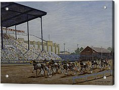 Indiana State Fair Acrylic Print by Clifford Cox