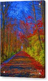 Indiana Trees Digital Oil Acrylic Print by David Haskett