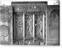 Indiana University Myers Hall Physiology Acrylic Print by University Icons