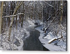 Indiana Winter Acrylic Print by Thomas Fouch