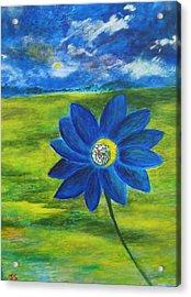 Indigo Blue - Sunflower Acrylic Print