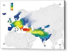 Indo-european Language Origins Acrylic Print by Mikkel Juul Jensen