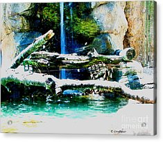 Indoor Nature Acrylic Print by Greg Patzer