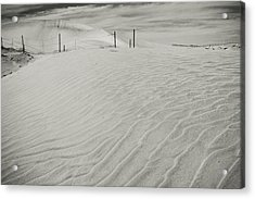 Inevitable Acrylic Print by Laurie Search