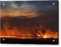 Acrylic Print featuring the photograph Inferno II by Scott Bean