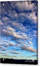 Influence Of Dusk Acrylic Print by Michael Eingle