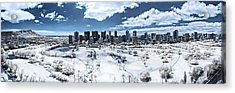 Infrared Honolulu Acrylic Print