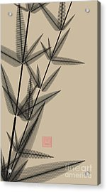Ink Style Bamboo Illustration In Black Acrylic Print