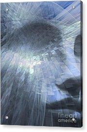 Inner Dialog  Acrylic Print by Elizabeth McTaggart