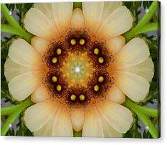 Inner Petal Flower Mandala Acrylic Print