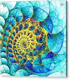 Inner Structure Acrylic Print by Anastasiya Malakhova