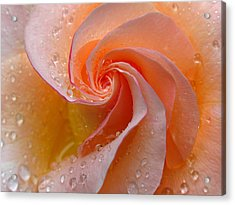 Innocent Beauty Acrylic Print by Juergen Roth