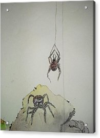 Insects That Crawl And Fly Album Acrylic Print by Debbi Saccomanno Chan