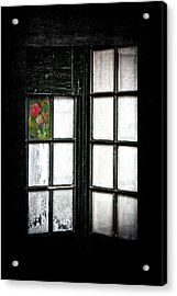 Inside Looking Out Acrylic Print by Bobbi Feasel