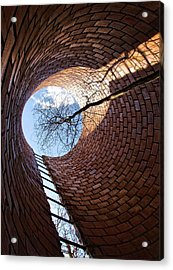 Inside Out 2 Acrylic Print by Tom Druin