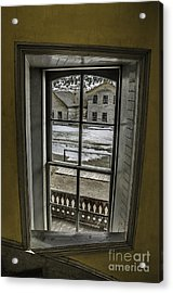 Inside Out Acrylic Print by Sue Smith
