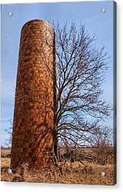 Inside Out Acrylic Print by Tom Druin