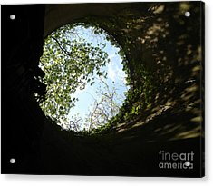 Acrylic Print featuring the photograph Inside The Silo by Jane Ford